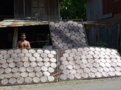 Rice paper circles, drying in the sun - now I want to go and have some of the spring rolls they're used for