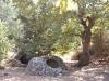 Byzantine wells